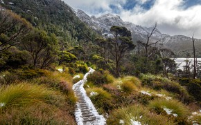 Picture Australia, Tasmania, Cradle Mountain