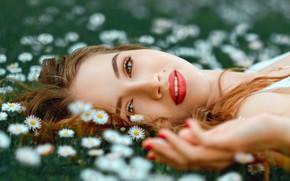 Wallpaper look, girl, flowers, face, mood, lipstick, meadow, Daisy, Saul Ke, Gabia, Saul Kerikas