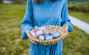 Picture girl, basket, eggs, hands, dress
