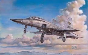 Picture easy, USA, multi-role fighter, H.Sasaki & T.Kurokawa, F-5F Tiger II US Air Force, Northrop F-5 …