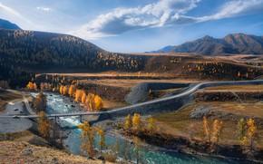 Picture road, autumn, landscape, mountains, bridge, nature, river, Altay, Sensing