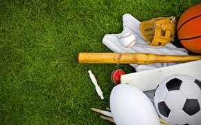 Picture grass, lawn, football, balls, baseball, Rugby, basketball, glove, sports, bit, inventory