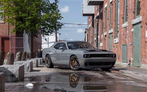 Picture Dodge, Challenger, Dodge Challenger, Muscle car, Hellcat, R/T, Widebody, Scat Pack 392, Redeye Review