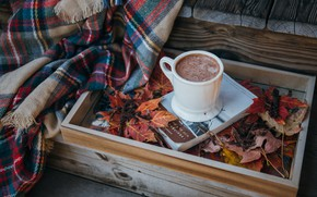 Picture leaves, Cup, plaid, very, cocoa