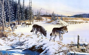 Picture winter, field, forest, the sky, snow, nature, figure, wolf, pack, picture, ate, art, space, pair, …