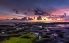 Picture sea, the sky, clouds, sunset, stones, the ocean, shore, moss, sky, coast, clouds, rocks, sundown, …
