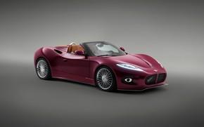 Picture auto, supercar, Spyker, Venator, B6