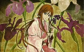Picture girl, flowers, Bleach, Bleach, irises, Inoue Orihime