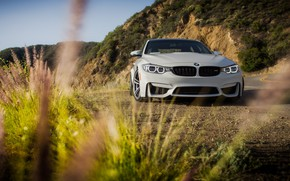 Picture BMW, Green, White, Mountains, F82