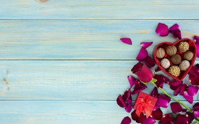 Picture gift, heart, roses, petals, candy, red, red, love, heart, wood, flowers, romantic, chocolate, valentine's day, …