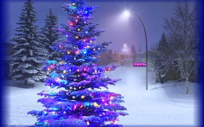 Picture holiday, tree, illumination
