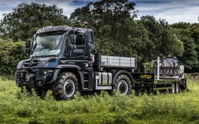 Picture field, grass, trees, Mercedes-Benz, truck, the trailer, machinery, Unimog, U430