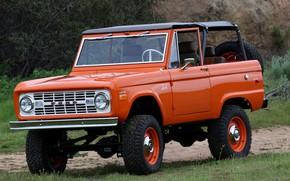 Picture Ford, SUV, 1966, Bronco, 2019, ICON Old School BR