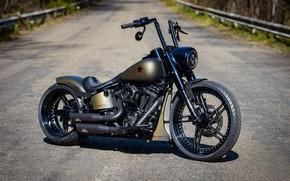 Picture Harley Davidson, Harley-Davidson, Custom, Motorbike, 2020, Thunderbike, Softail Slim S, By Thunderbike, BLACK STAR
