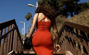 Picture the sun, sexy, pose, model, figure, dress, hairstyle, ladder, railings, brown hair, bag, in red, …