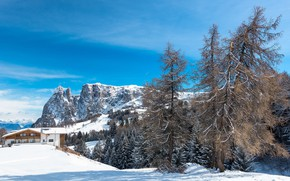 Picture winter, forest, the sky, clouds, snow, trees, mountains, branches, house, blue, the slopes, tops, view, …