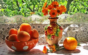 Picture flowers, orange, vase, still life, apricots