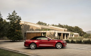 Picture Ford, profile, convertible, 2018, dark red, the soft top, Mustang Convertible