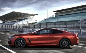 Picture coupe, BMW, side view, Coupe, 2018, 8-Series, dark orange, M850i xDrive, Eight, G15