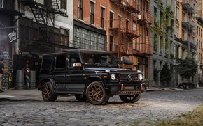 Picture Mercedes-Benz, AMG, 2018, G-Class, Gelandewagen, Final Edition, G65