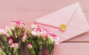 Picture bouquet, flowers, the envelope, bouquet