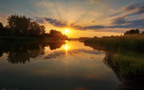 Picture the sky, rays, trees, sunset, nature, river, the evening, Agoranov Alex