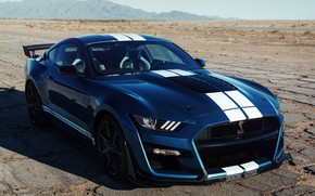 Picture blue, Mustang, Ford, Shelby, GT500, 2019, old asphalt