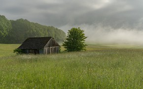Picture field, summer, fog, house