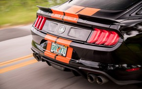 Picture Mustang, Ford, Shelby, rear view, GT-S, 2019