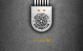 Picture wallpaper, sport, logo, football, Al-Sadd SC
