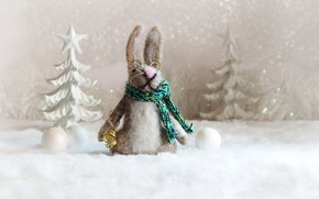 Picture holiday, toy, hare