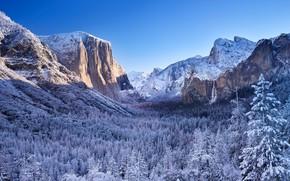 Picture CA, USA, Yosemite, Sierra Nevada