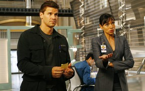 Picture pose, jacket, handle, male, actors, the series, a woman, still from the film, David Boreanaz, …