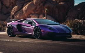 Picture Lamborghini, supercar, Aventador, HRE, Superveloce, LP-750, Aventador SV, Viola Parsifae