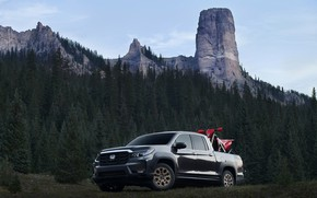 Picture forest, trees, mountains, Honda, pickup, 2020, Ridgeline, 2021