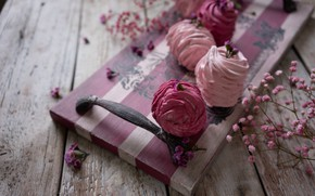Picture flowers, the sweetness, food, Board, SEFI