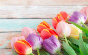 Picture flowers, bouquet, spring, colorful, tulips, buds, fresh, flowers, beautiful, tulips, spring