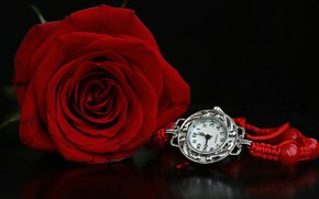 Picture watch, rose, red