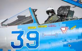Picture Fighter, Lantern, Helmet, Ukraine, Su-27, Pilot, Cockpit, Ukrainian air force, ILS, Gdynia Aerobaltic 2019, Ejection …