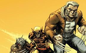 Picture Costume, Wolverine, Logan, Comic, Claws, Wolverine, Logan, Marvel, Marvel Comics, Comics, Marvel, Comics, Costume, James …