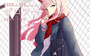 Picture girl, mesh, 002, Darling In The Frankxx, Cute in France, Zero Two
