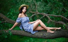 Picture girl, photo, photographer, model, portrait, Maxim Romanov, Maxim Romanov, Angelika Svoykina
