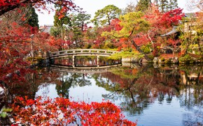 Picture autumn, leaves, trees, bridge, lake, Park, Japan, Japan, Kyoto, Kyoto, landscape, bridge, park, autumn, lake, …