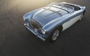 Picture car, blue, retro, austin-healey 100M