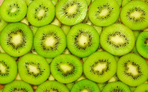 Picture close-up, texture, kiwi, fruit, green, slices