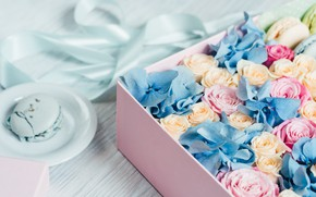 Picture flowers, box, gift, roses, tape, buds, macaron