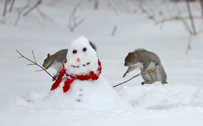 Picture winter, snow, jump, the game, snowman, proteins
