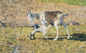 Picture animals, oil, picture, canvas, 1890, Giovanni Segantini, Giovanni Segantini, The goat and the kid