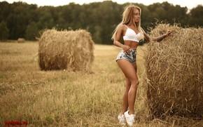 Picture field, girl, pose, shorts, figure, hay, legs, Nick Mölln, bales, Julia Abrams, Julia Abrams, Julia …