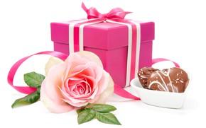 Picture gift, rose, candy, Anya Ivanova